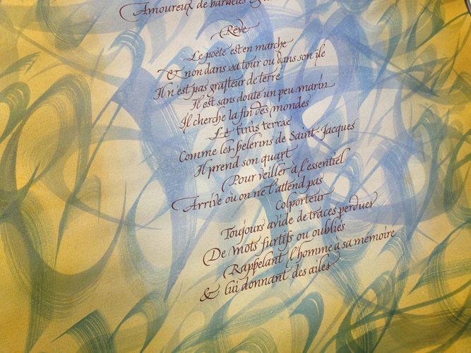 calligraphie contemporaine latine dessin ecriture